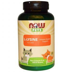 L-лизин для кошек, Now Foods, 226.8 г