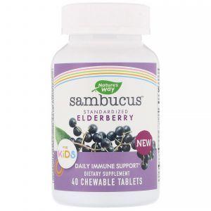 Бузина для детей, Sambucus for Kids, Standardized Elderberry, Nature's Way, 40 жевательных таблеток